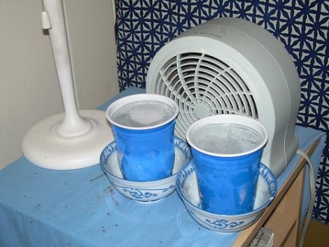 20 Maneiras De Se Refrescar Sem Ar Condicionado